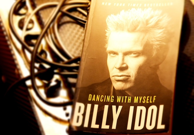 billy_idol_wordpress_book_downsized.jpg